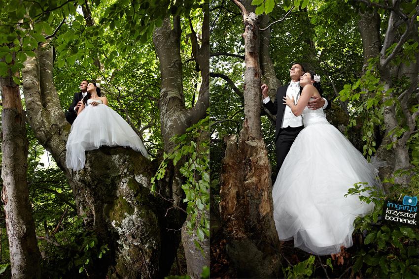 fotograf piwniczna zdrój las 3